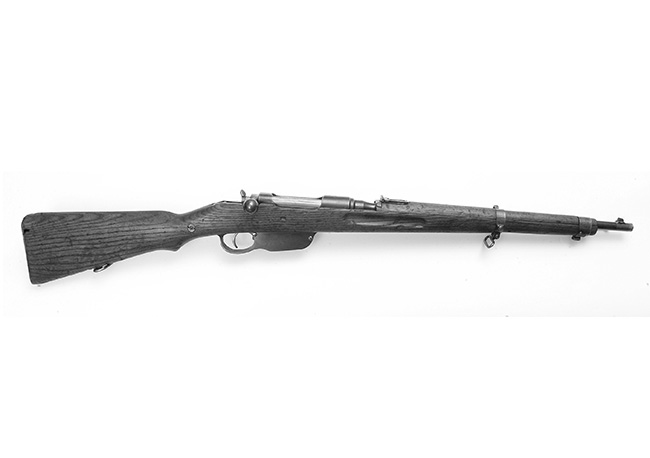 //www.shootingtimes.com/files/10-most-readily-available-military-surplus-guns/steyr_mannlicher_m95_austrian_carbine.jpg