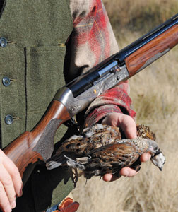 Built on a true-to-scale 28-gauge semiautomatic action, this new model is a dedicated quail hunter's dream.