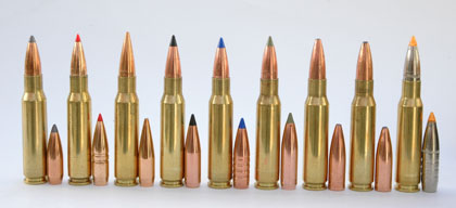 What S The Best Big Game Bullet