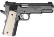 st_new_handguns_2011_pl