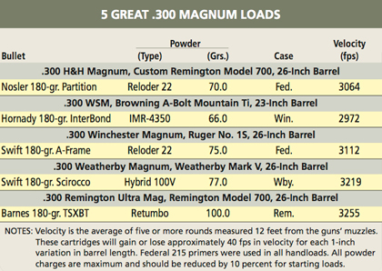 Pros & Cons of the .300 Magnums