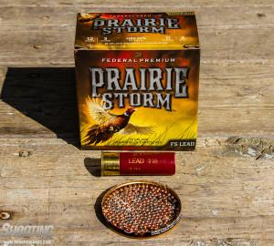 Prairie-Storm