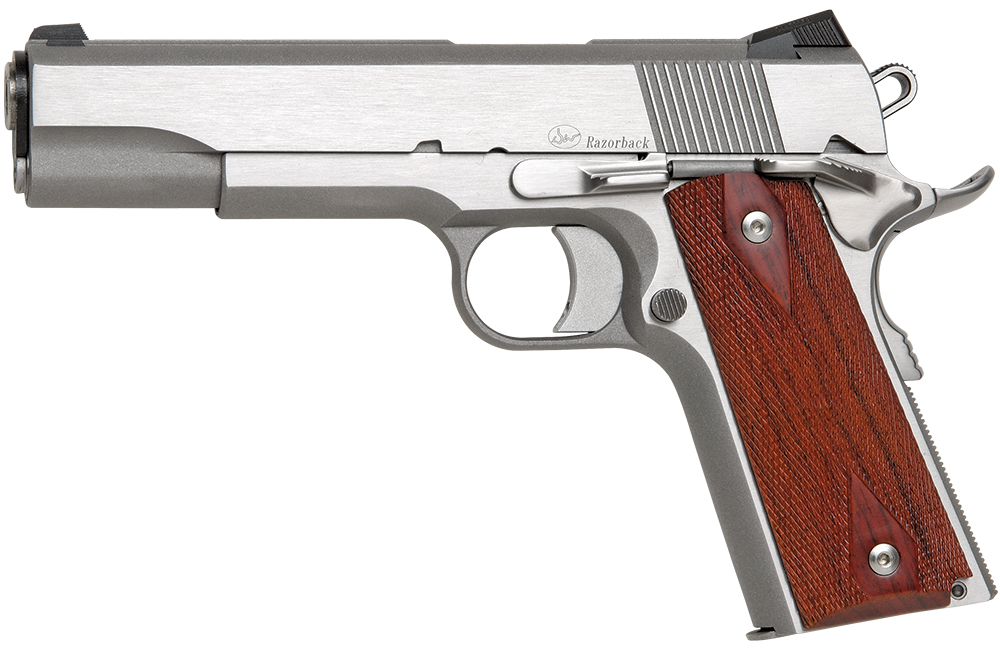 dan_wesson_razorback_10mm_1911