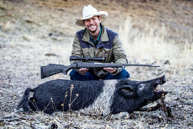 The 6.5mm Wby. Mag. loaded with the Barnes 127-gr. LRX also worked perfectly up close at 25 yards on this 200-pound boar.  PHOTO BY JUSTIN MOORE