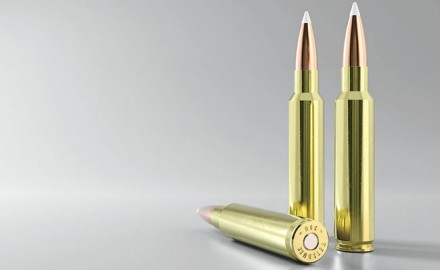 The new .33 Nosler is designed to equal or surpass other cartridges in its caliber class.