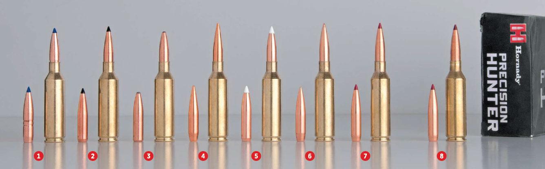 1. Barnes 127-Gr. LRX 2. Swift 130-Gr. Scirocco II 3. Swift 140-Gr. A-Frame 4. Berger 140-Gr. VLD Hunting 5. Nosler 140-Gr. AccuBond 6. Sierra 142-Gr. MatchKing 7. Hornady 147-Gr. ELD Match 8. Hornady 143-Gr. ELD-X