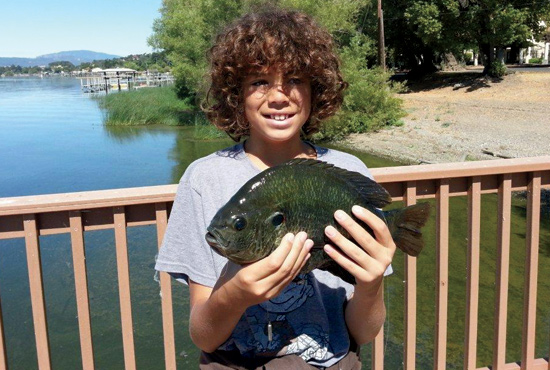 //www.in-fisherman.com/files/10-top-sunfish-spots/clear-lake-california.jpg