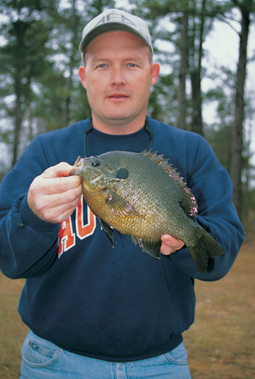 //www.in-fisherman.com/files/10-top-sunfish-spots/reelfoot-lake-tennessee.jpg