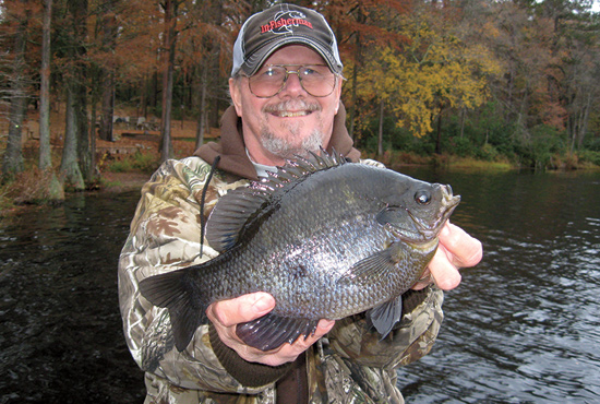 //www.in-fisherman.com/files/10-top-sunfish-spots/tidal-rivers-north-carolina.jpg