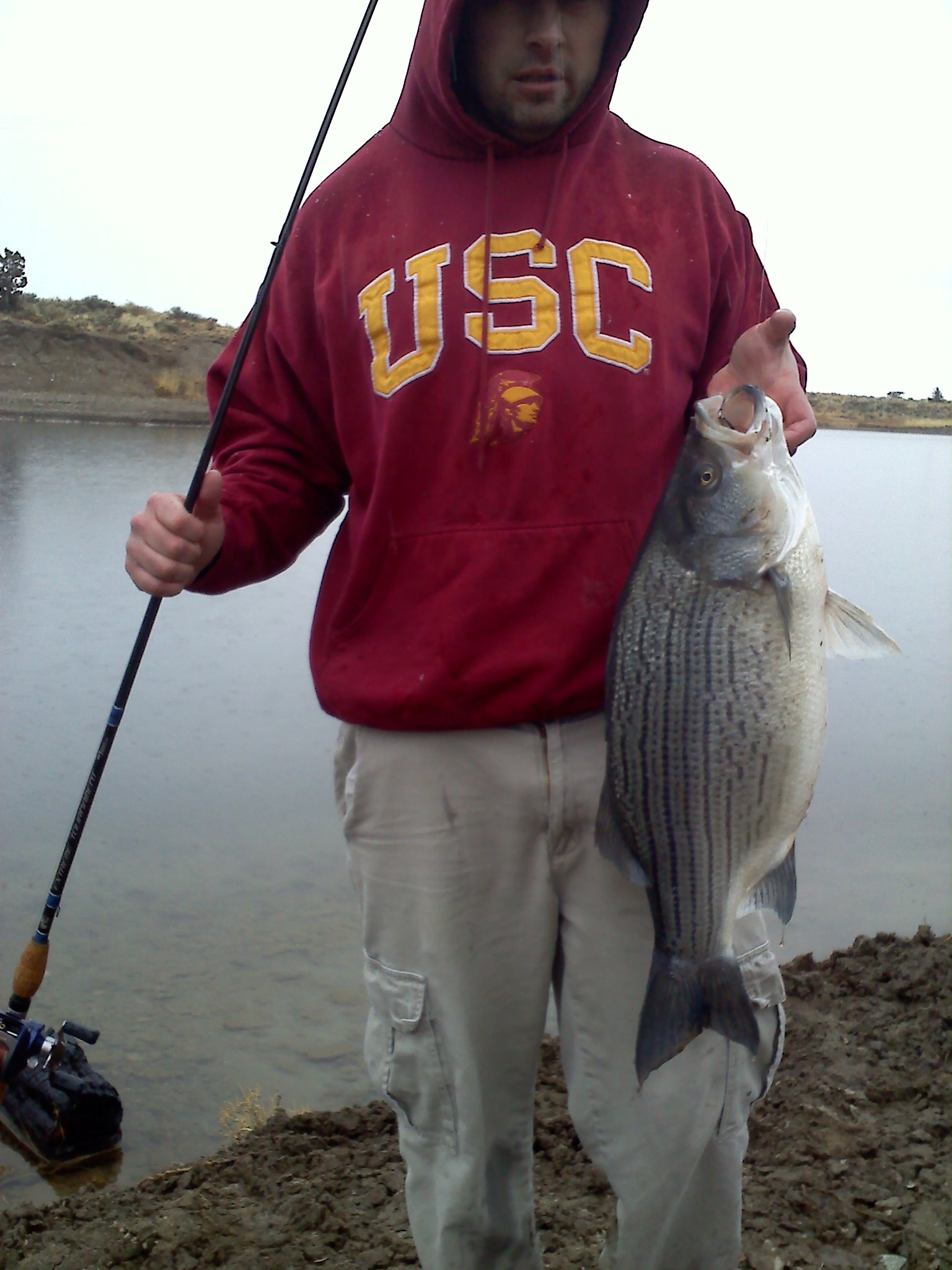 Dustin Stubbs Lakeview Oregon    Species: Hybrid Striped Bass Date Caught: 02/08/2012 Kept /