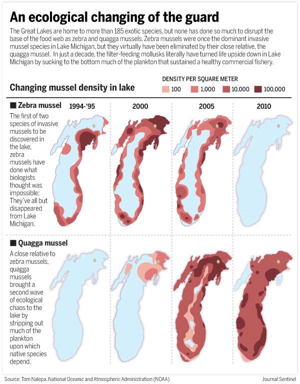 Salmon stocking 2017 for Michigan fish stocking