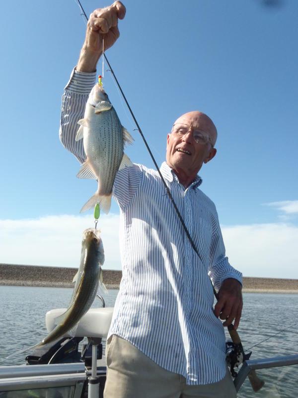White Bass Fishing In Kansas Missouri Oklahoma