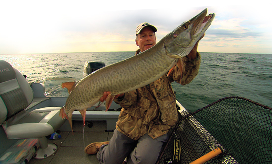 A Precision Swimbait System for Muskies and Pike         Weedlines—the mother of all