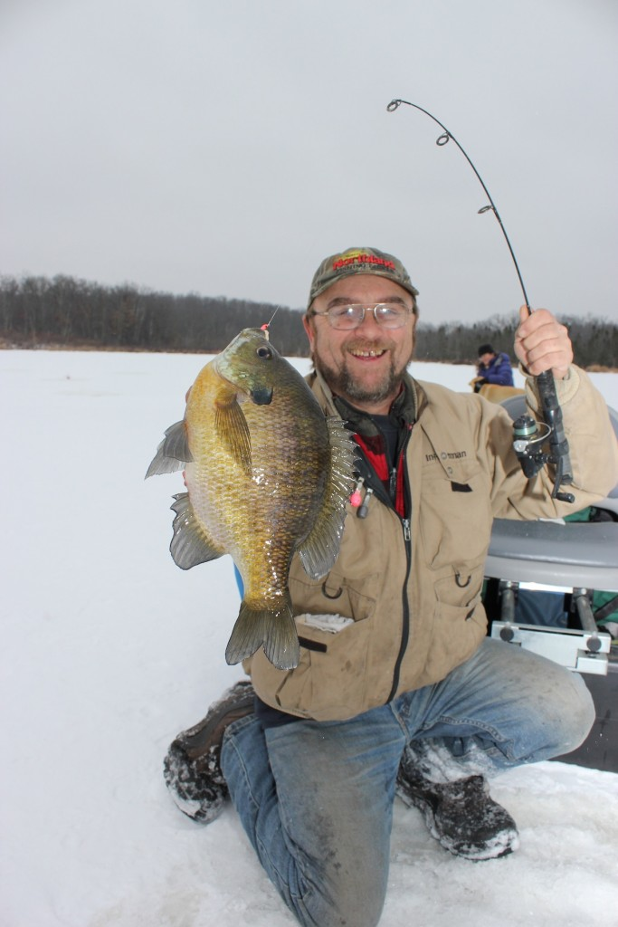 Two fisted bluegills for Ice fishing bluegill