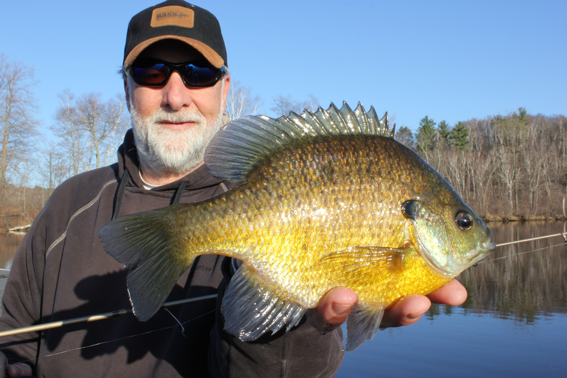 Bluegills are (finally) prowling through shallow water in the small, local lakes I haunt in