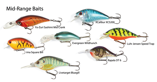 Countless excellent cranks fish between 2 and 8 feet. Bass depth in spring depends on water clarity, temperature, and cover options.