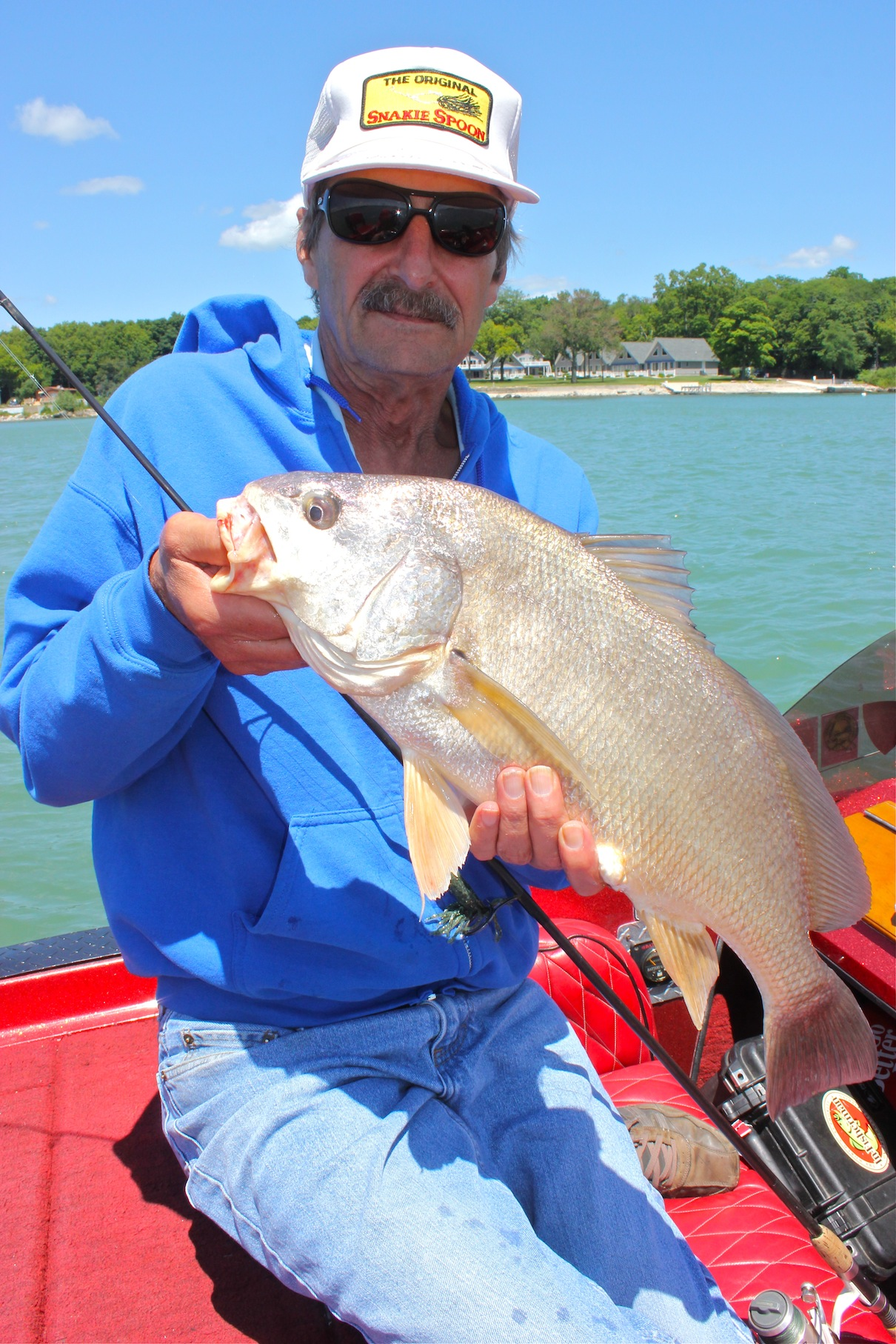 The freshwater drum (Aplodinotus grunniens to you Latin-speaking folks out there) has more