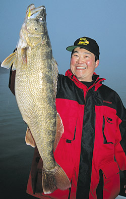 In spring, mass movements of huge Great Lakes walleyes flock to and funnel through natural