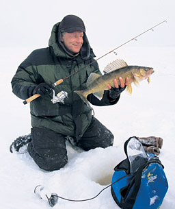 Swimming lures are designed with a baitfish profile -- resembling a minnow, chub, shiner, shad, or