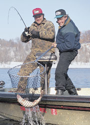 Midwinter is a time of rest in most environments. In the North Country -- walleye country -- lakes