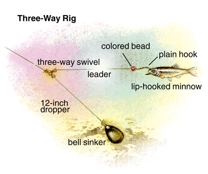 Three way rigging river walleyes in fisherman page 3 for River fishing rigs