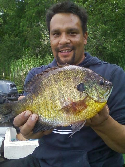 Jim Uran Lengby Mn  Over the last couple of years I have become very passionate about catching