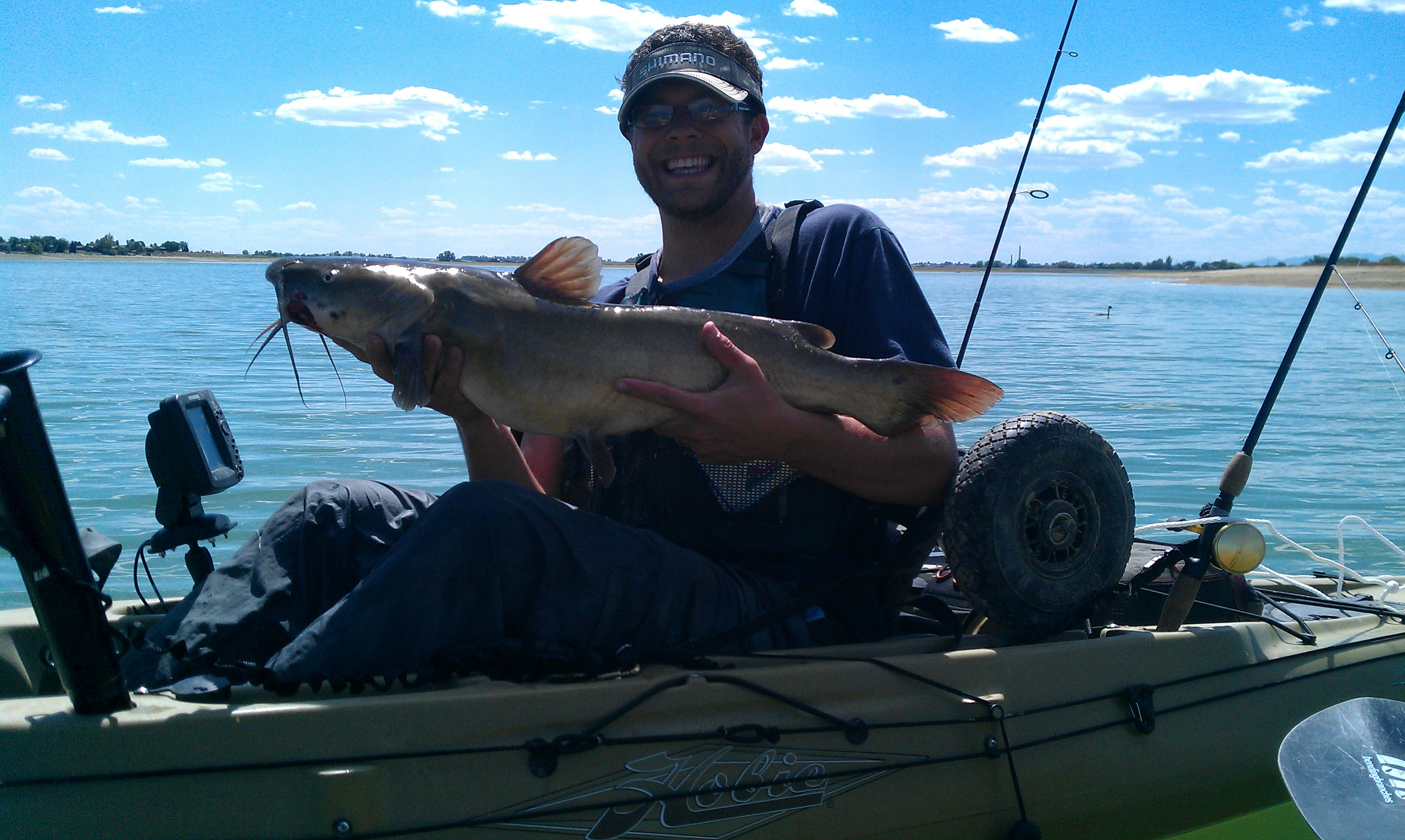 Patrick Rogers-Ostema Fort Collins CO  I caught this beautiful channel catfish while trolling an