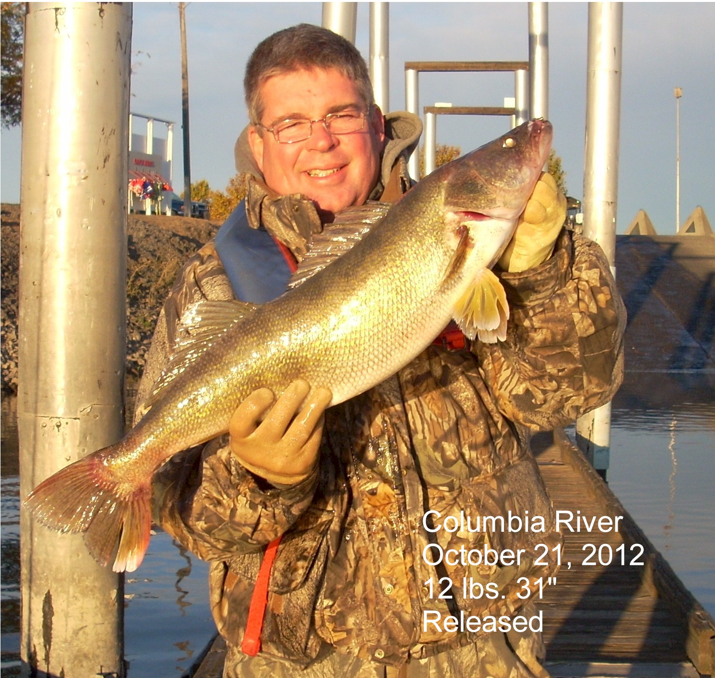 Dan Tuinstra West Linn Oregon    Species: Walleye Date Caught: 10/21/2012 Kept / Released: