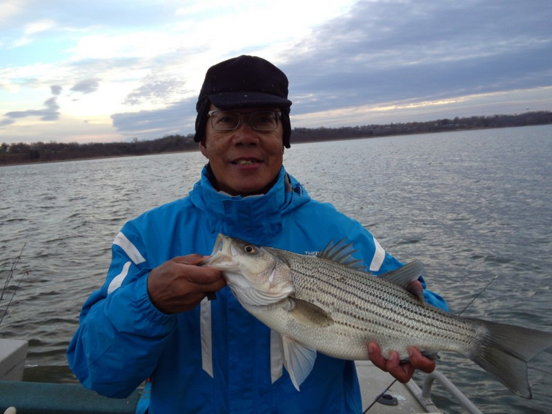 A summary of the Heartland's white bass fishing during the fall of 2012