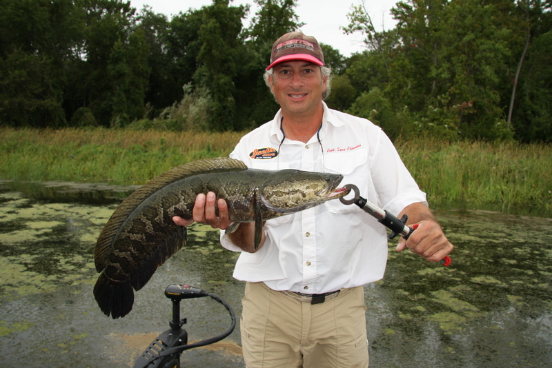 Captain Steve Chaconas with a Maryland snakehead. Pok-Chi Lau of Lawrence, Kansas, and I have