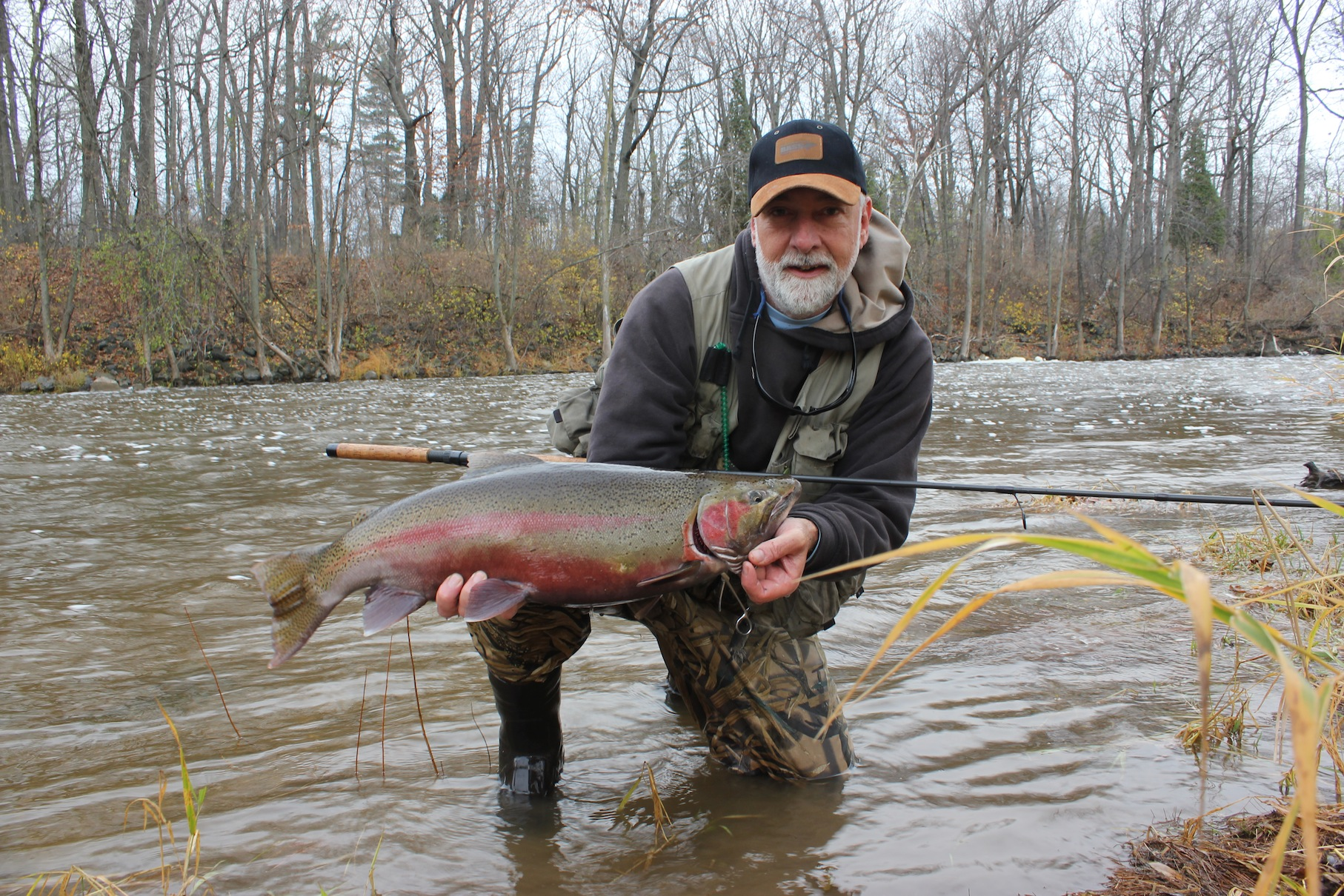 It's that time of year again. Rivers swollen with warming rain bring steelhead charging into the