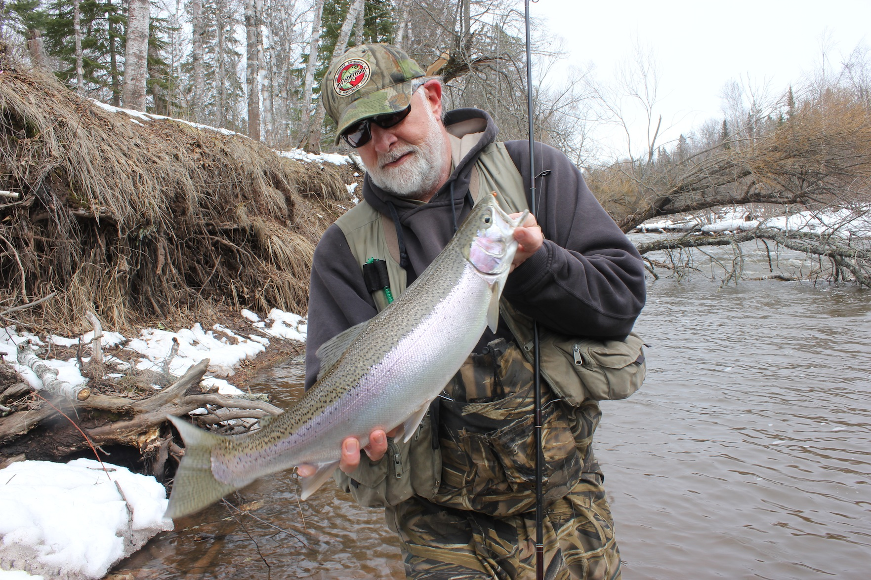 Not a big specimen, by anyone's standards, but look how pristine and healthy she is. Steelhead