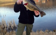 7.5lb Pre-spawn large mouth!