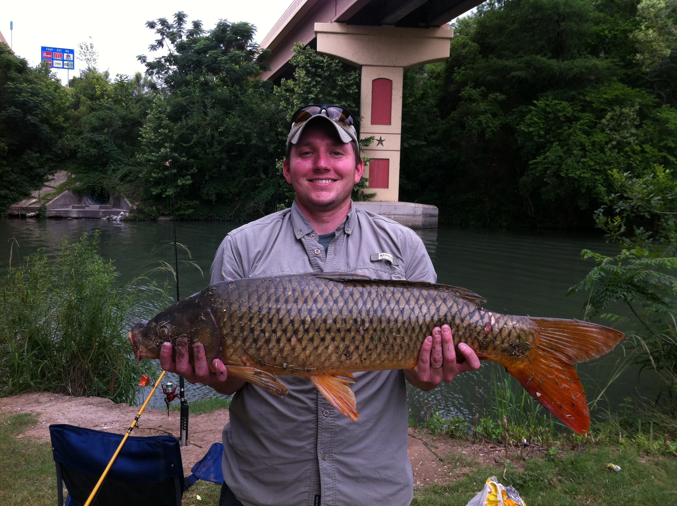 Michael Atkins Jr Leon valley Texas  35 inch common carp. I'm new to this and don't keep them.