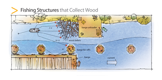 Some waterways abound with wood, resembling a flooded forest or a warren of root wads and logjams.