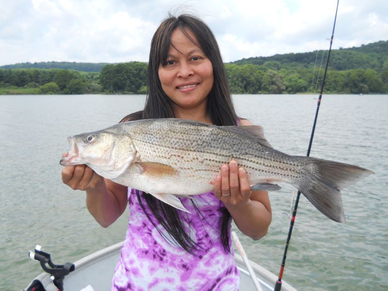 Natthavipa Huttemeyer Budd Lake New Jersey  I was trolling flies with my husband Arthur with his