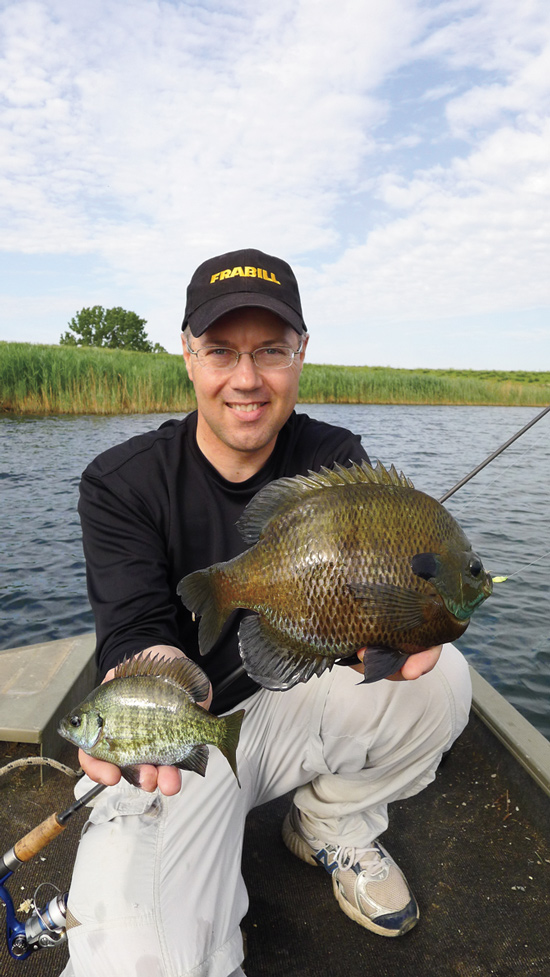 Prodigious panfish ponds in fisherman Best lures for pond fishing