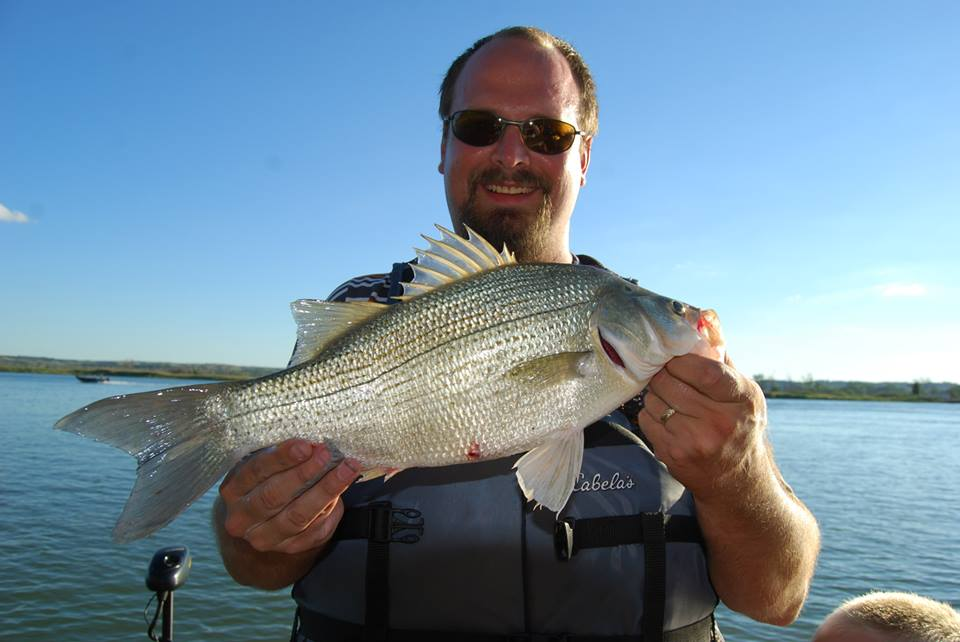 Dustin Bellinger Kearney Nebraska  PLEASE NOTE THIS SUBMISSION IS FOR A WHITE BASS! THIS