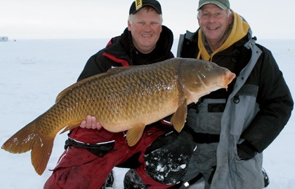 Carp-on-Ice-Feature-In-Fisherman