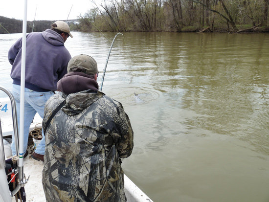 hooked on alabama catfish Sportfish management in alabama ponds is a collection of videos now available from the alabama many children and first-time anglers become hooked on fishing.