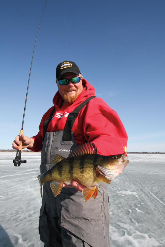 The ice fishing perch search in fisherman for Ice fishing perch lures