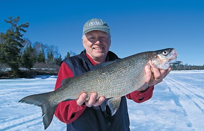 Ice-Fishing-Whitefish-Feature-In-Fisherman