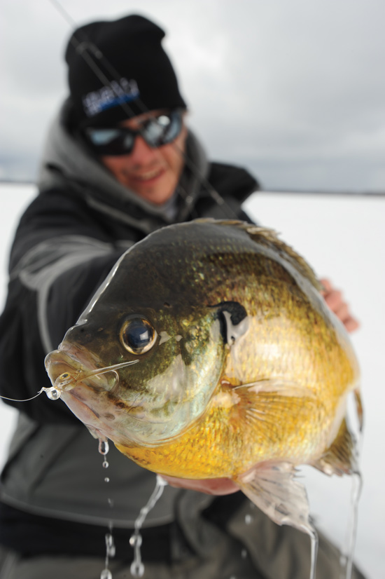 The Clear Connection for Panfish Lures