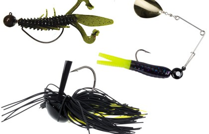 Faced with a choice of only one lure style to use for bass, many anglers would opt for their best