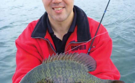 In August, panfish patterns are like a crazy quilt. Fishermen can target whatever they want in