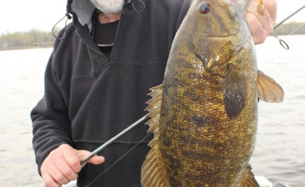Matt Straw offers some great advice on fishing smallmouth bass jigs.