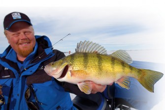 Understanding-Perch-Diets-Feature-In-Fisherman
