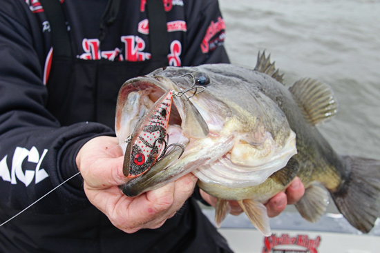 //www.in-fisherman.com/files/2014/03/Bass-Rattlebait-In-Fisherman.jpg
