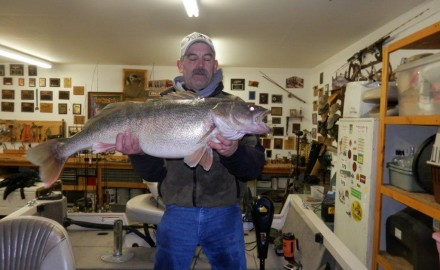 Veteran river rat John Grubenhoff landed an enormous walleye on Friday, February 28 from the