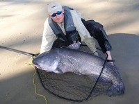 A-Future-for-Huge-Catfish-Feature-In-Fisherman